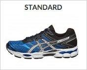 Standard Shoe Type
